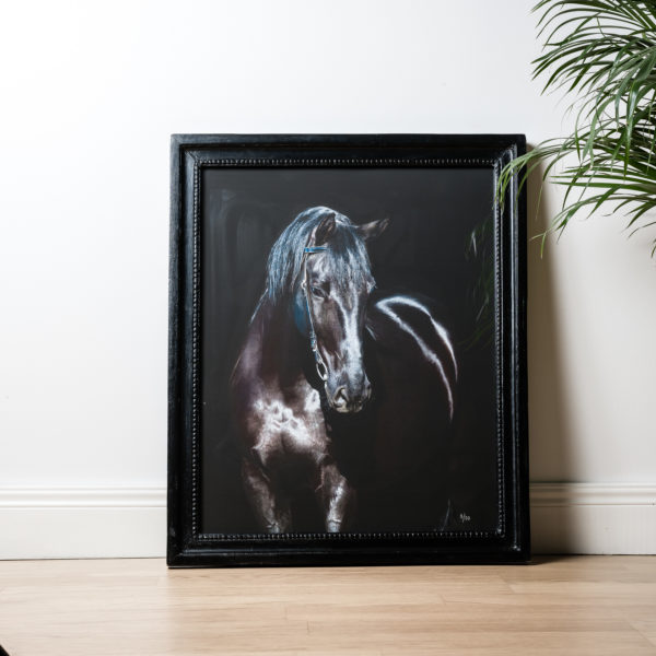 Picture Horse Black with Frame